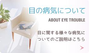 目の病気について 目に関する様々な病気についてのご説明はこちら